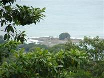 Farms and Acreages for Sale in Escaleras, Puntarenas $599,000