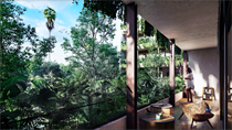 Commercial Real Estate for Sale in Veleta, Tulum, Quintana Roo $215,818