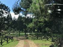 Recreational Land for Sale in Valle de Bravo, Estado de Mexico $760,000