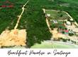 Lots and Land for Sale in Sarteneja, Corozal $170,000