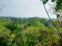Lots and Land for Sale in Ojochal, Puntarenas $500,000