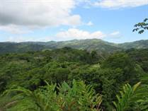Lots and Land for Sale in Platanillo, Puntarenas $99,000