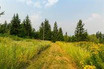 Lots and Land for Sale in S.E. Salmon Arm, Salmon Arm, British Columbia $3,450,000