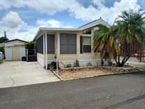 Homes for Sale in Rainbow Village Carefree Resort, Largo, Florida $33,500
