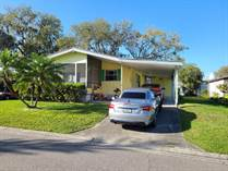 Homes for Sale in Pleasant Living, Riverview, Florida $39,900