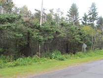 Homes for Sale in Guernsey Cove, Murray Harbour, Prince Edward Island $25,000