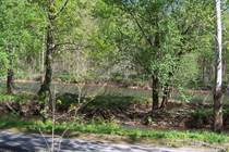 Lots and Land for Sale in Great Cacapon, West Virginia $50,000