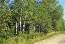 Lots and Land for Sale in Riverhurst, Cold Lake, Alberta $99,900