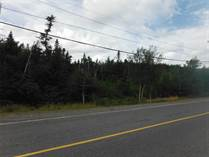 Lots and Land for Sale in Holyrood, Newfoundland and Labrador $299,000