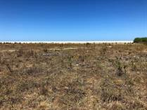 Lots and Land for Sale in Elias Calles, Baja California Sur $100,000