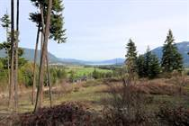 Lots and Land for Sale in Tappen, British Columbia $245,000