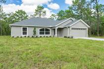 Homes for Sale in Royal Highlands Unit 7, Weeki Wachee, Florida $229,900