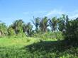 Lots and Land for Sale in San Ignacio, Cayo $77,000
