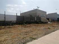Commercial Real Estate for Sale in Las Gaviotas, Playas de Rosarito, Baja California $265,000