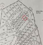 Lots and Land for Sale in Big White, British Columbia $399,900