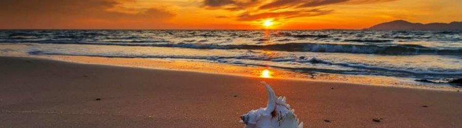 Baja Rentals, Tijuana Rentals, Rosarito Rentals, Vacation