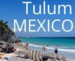 Mr. Tulum Real Estate
