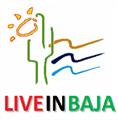 Team Baja