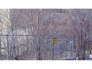Land for sale in 11700 HARPER Avenue, Detroit, MI, 48213