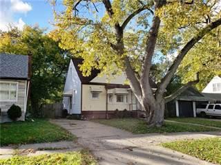 Single Family for sale in 8221 BURT Road, Detroit, MI, 48228