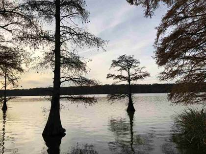 Lots And Land for sale in 0 LAKE BOLIVAR RD, Benoit, MS, 38725