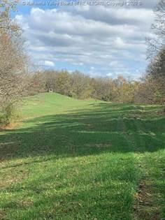 Lots And Land for sale in 0 Dutch Ridge Road, Ravenswood, WV, 26164