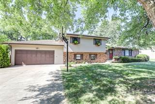 Single Family for sale in 504 West 4TH Street, Homer, IL, 61849