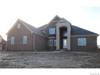Single Family for sale in 00000 BECK Road, Northville, MI, 48167