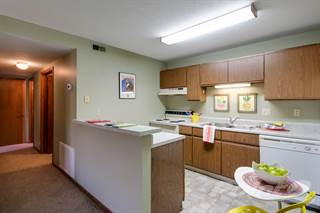 Apartment for rent in 1428 Beechwood Terrace - 1 Bed 1 Bath Lower Level w/ Fireplace, Manhattan, KS, 66502