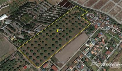 Farm And Agriculture for sale in Dela Paz Sur, City of San Fernando, Pampanga, San Fernando, Pampanga