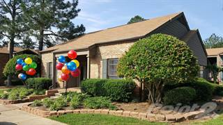 Apartment for rent in Woodridge, Jackson, MS, 39204