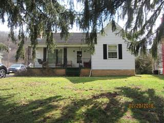 Single Family for sale in 199 James Hannah Drive, South Shore, KY, 41175