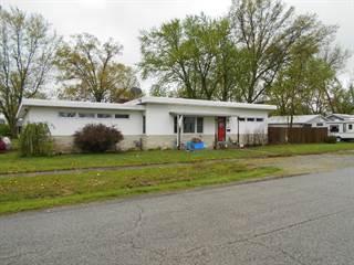 Single Family for sale in 434 Fair Avenue, Flora, IL, 62839
