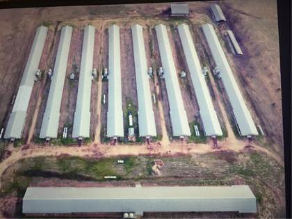 Farm And Agriculture for sale in 13984 Colony  RD, Summers, AR, 72769