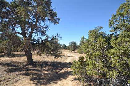 Lots And Land for sale in 55 Deerfield Road, Pinehill, NM, 87357