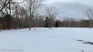 Land for sale in OOO E GLASS ROAD, Brandon Township, MI, 48462
