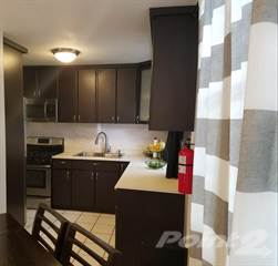 Residential Property for rent in Calle Pino, Toa Alta, PR, 00953