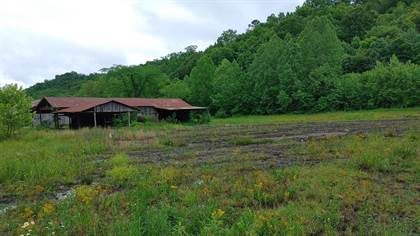 Farm And Agriculture for sale in Route 7 Little Sandy, Sandy Hook, KY, 41171
