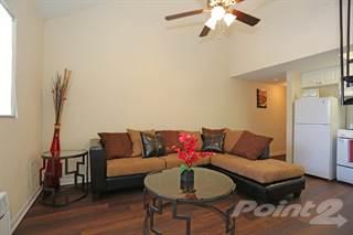 Apartment For Rent In Tzadik Oaks   Royal Palm, Tampa, FL, 33612
