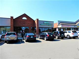 Comm/Ind for sale in 30905 FIVE MILE Road, Livonia, MI, 48154