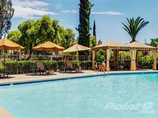 Apartment for rent in Sonoran Terraces Apartment Homes, Casas Adobes, AZ, 85741