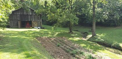 Farm And Agriculture for sale in 7227 E Hwy 30, Jackson, KY, 41339