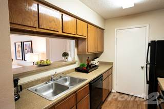 Apartment for rent in Paces Crossing - Monet, Denton, TX, 76210