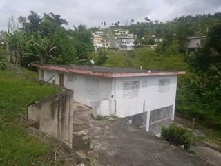 Single Family for sale in 0 KM 65 HM 2BO PASTO VIEJO, Cayey, PR, 00736