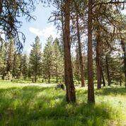 Land for sale in 43 Vernon Court, Mccall, ID, 83638