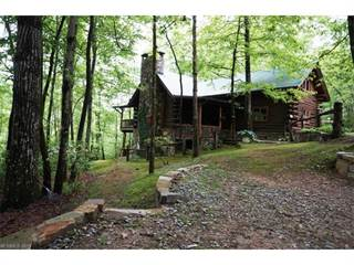 Residential for sale in 613 Whitetail Trail, Eastatoe, NC, 28772