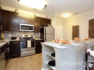 Apartment for rent in Arrington Ridge - Mesa, Round Rock, TX, 78665