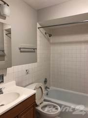 Apartment for rent in 452 Oakdale Building - Studio, Chicago, IL, 60657