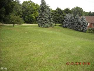 Land for sale in 5909 Lakeview Dr, Greater Sterling Heights, MI, 48094