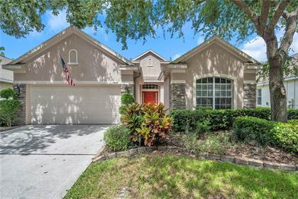 Residential Property for sale in 10224 EVERGREEN HILL DRIVE, Tampa, FL, 33647